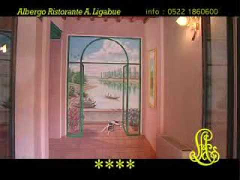 Video Hotel Ligabue