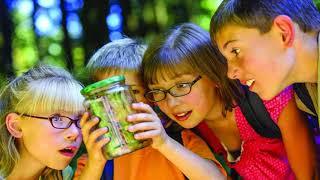 Как не уничтожить в своих детях подвижность и любознательность