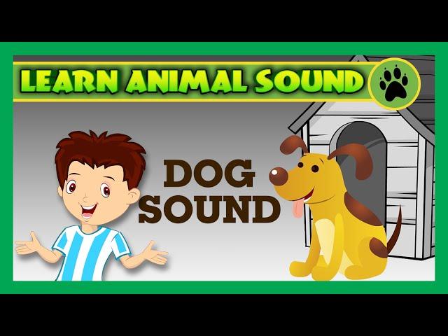 Animal Sound for Children | Dog Sound, Cat Sound, Pig Sound | Kids Hut
