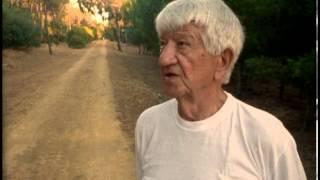 Dva filmy o Janu Vladislavovi