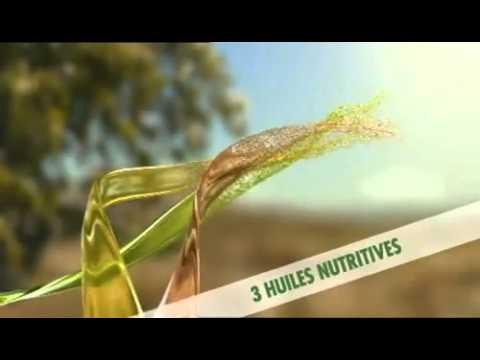 Canción Anuncio Spot Nuevo Fructis Oleo Repair de Garnier (2010)