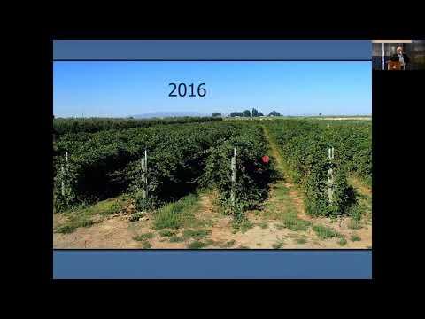 Organic Control of SWD in Berries Alan Schreiber