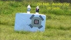 223 Rem - Remington UMC and Accutip 55gr