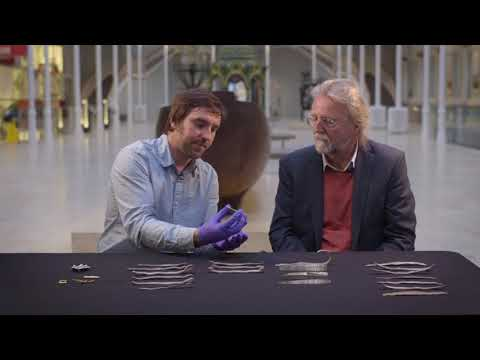 The Galloway Hoard: Dr Martin Goldberg in conversation with writer Michael Hirst