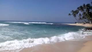 видео Где находится Индийский океан?