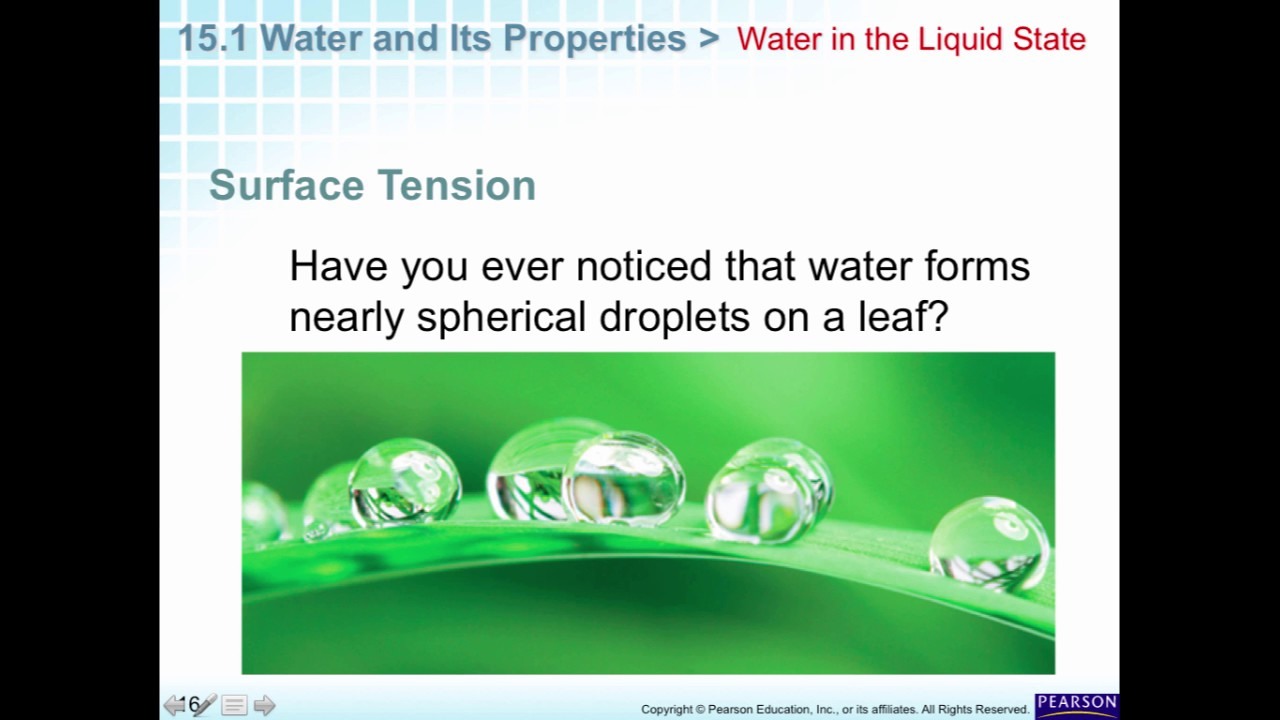 Chapter 15.1 Water and its Properties - YouTube