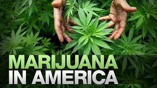 Black America & The Legal Marijuana Industry by Red & Blue Pill