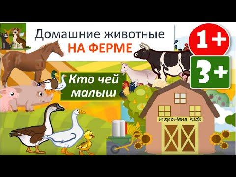 2+ Кто Чей Малыш Домашние животные и птицы Учим слова Развивающий мультик Видео урок Викторина