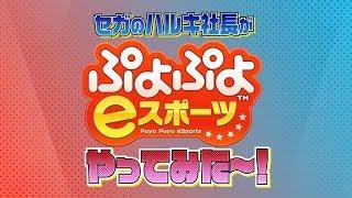セガサミーホールディングス社長「里見治紀」が「ぷよぷよeスポーツ」やってみた~! ~eスポーツ参戦への道~