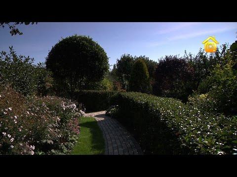 Сад ландшафтного дизайнера // FORUMHOUSE