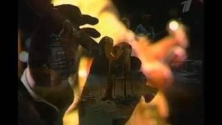 Аквариум   Город золотой 1995