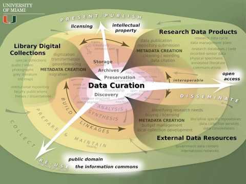 The Data Curation Initiative - University of Miami - January 2015