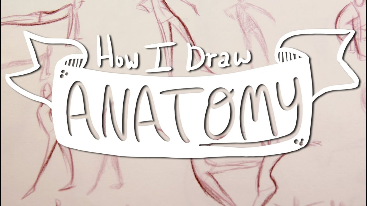How I Draw ANATOMY #1: Basic Gesture Drawing - YouTube