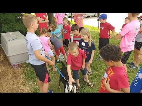Clover College 2017: Cover Kids Day Camp With Goats