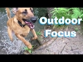 Outdoor Focus Games  - Dog Training Life - VLOG 26