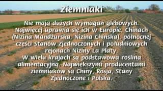 Rośliny Uprawne w Polsce i na Świecie (1/2)