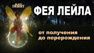 🌸ИДЕАЛЬНАЯ ФЕЯ🌸Улучшение ✿ Перерождение ✿ Прокачка и получение в Black Desert (MMORPG - ИГРЫ)