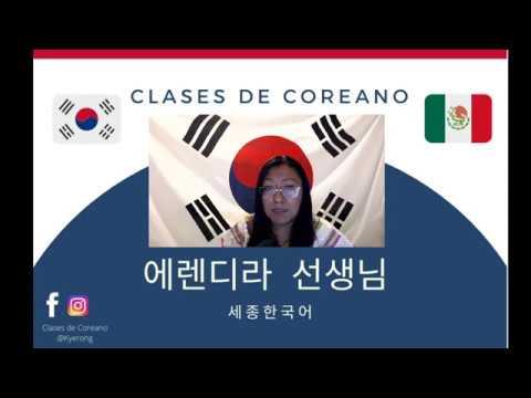 Download Libro Sejong 1 Lección 1 자기소개 Parte 1