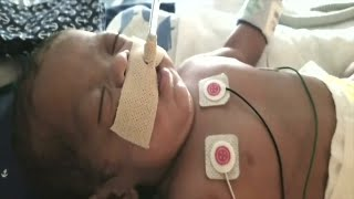'Miracle Babies' helps families with NICU infants