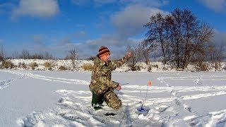 Ось що відбувається, коли жерлицы залишаєш без нагляду! Перший лід, риболовля на Жерлицы.