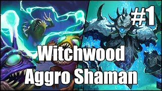 [Hearthstone] Witchwood Aggro Shaman (Part 1)