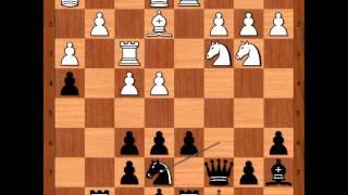 Tibor Fogarasi vs Fabiano Caruana: Budapest 2007
