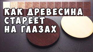 Как стареет древесина от морилки (уксус и железо) DIY Wood Stain (vinegar + iron) in life action(, 2015-12-01T20:07:48.000Z)