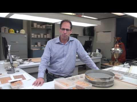 Soybean School: An Inside Look at Grading Soybeans