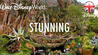 WALT DISNEY WORLD | Tour Disney