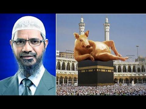 Miracles Of Allah 2014 Miracle of Alla...