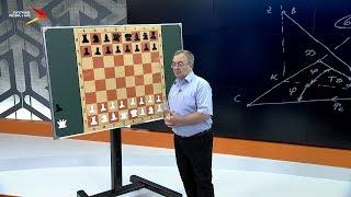 Шахматы. Основы игры. Дидактика