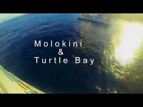Molokini and turtle bay snorkeling (Maui, Hawaii) 4k video- Go Pro