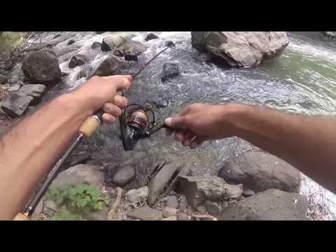 #2 Ловля Фореля на Спиннинг в Армении / Lure Fishing For Trout In Armenia