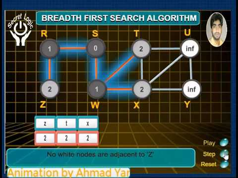 Breadth First Search Algorithm   Graph Algorithm   Programming