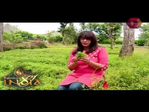 Flavours Of India: Ethnic Ambience Of Elephant Valley Resort   5th September 2015   Full Episode