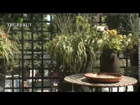 Aménager son balcon avec des pots de fleurs - Jardinerie Truffaut TV
