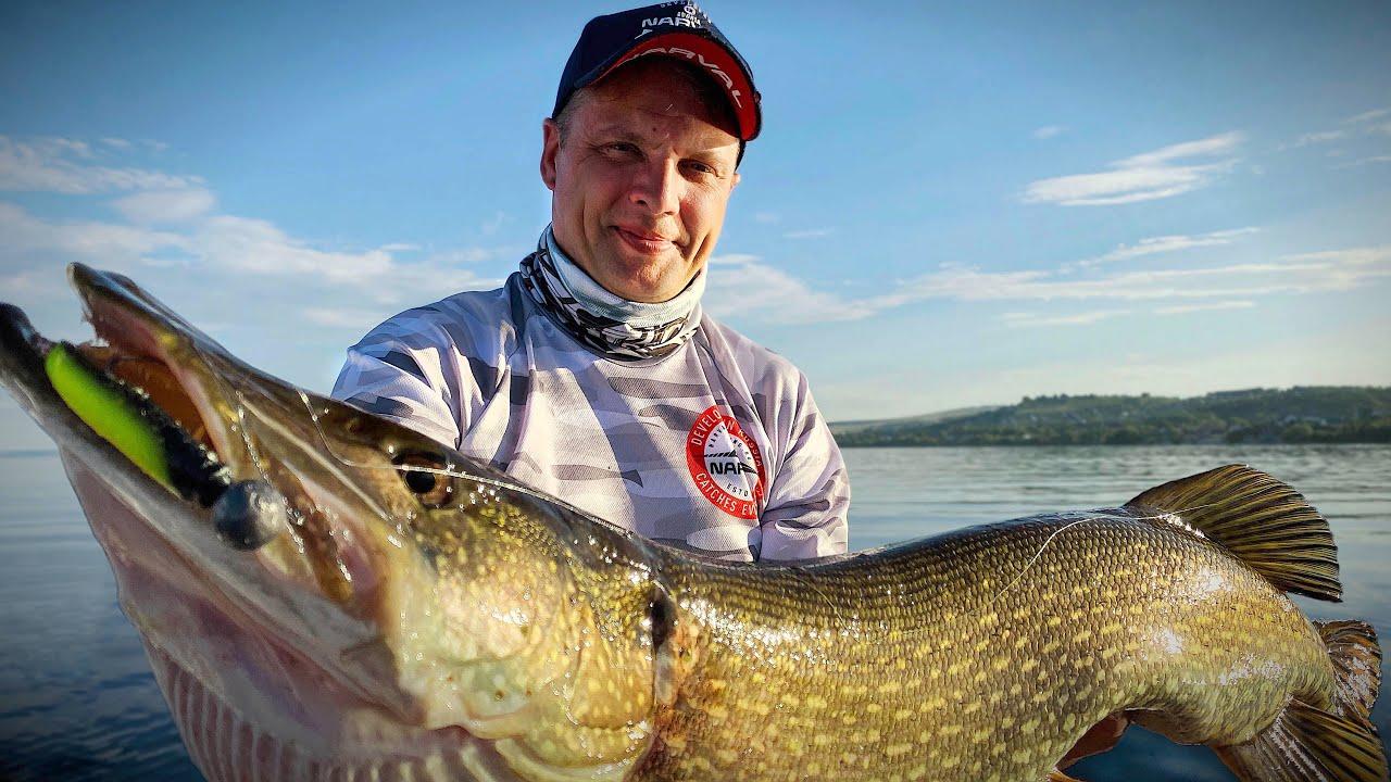 СИЛЬНЕЙШАЯ Саратовская ЩУКА не дает прохода СУДАКУ. Лучшая летняя рыбалка этого года!