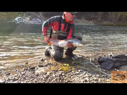 рыбалка в алтайском крае на тайменя