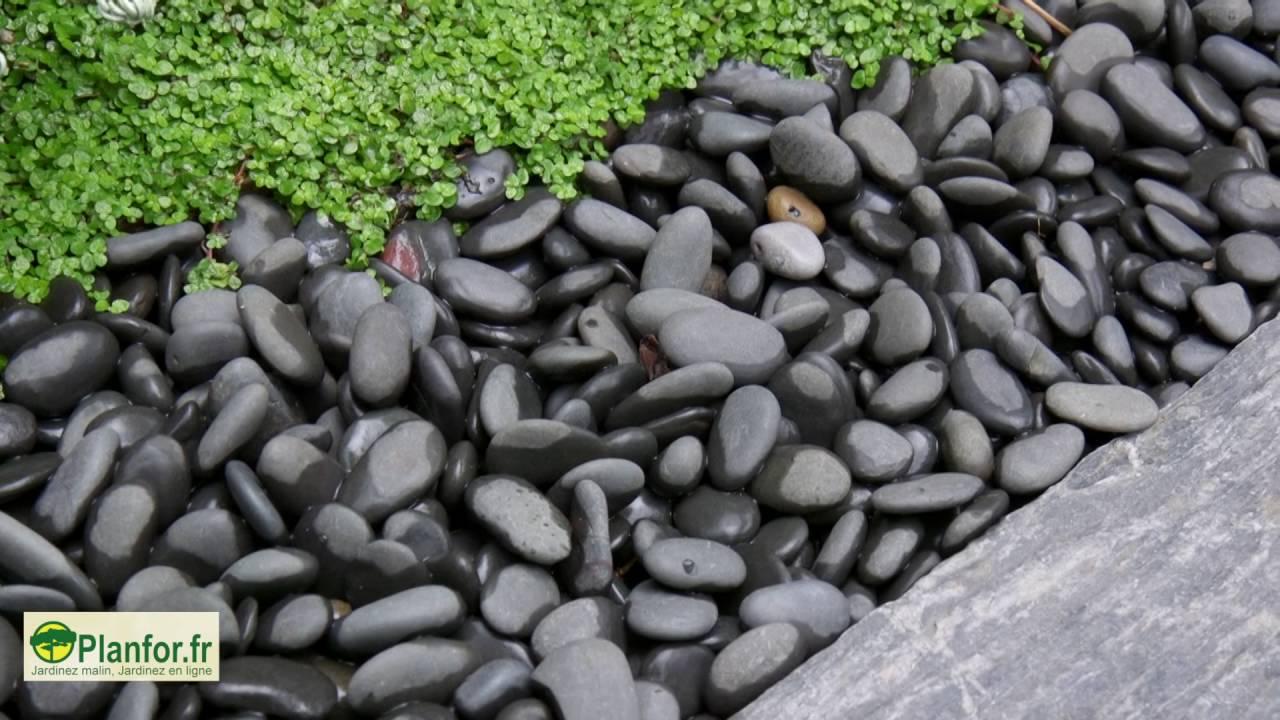 Un jardin japonais contemporain dans un petit espace youtube - Creer un jardin contemporain ...