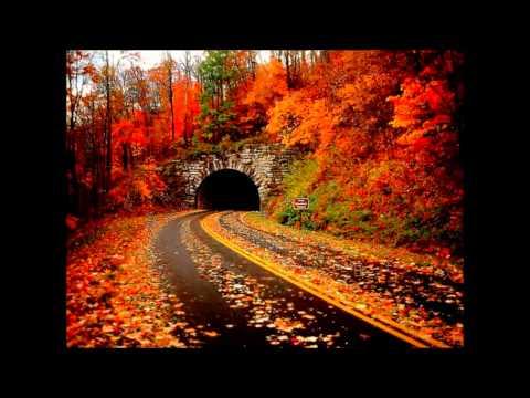 Zaroori Tha | Back 2 Love | Full Songs...
