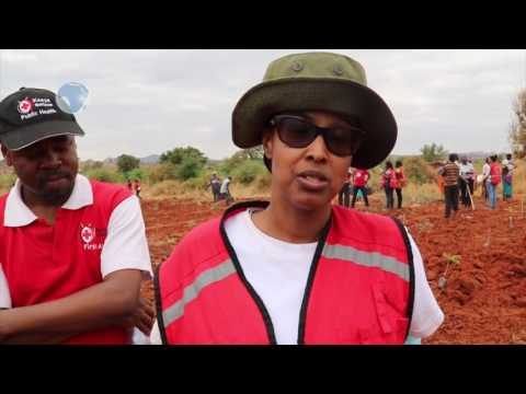 The Kenya Red Cross Society on the verge of breaking the Guinness World record