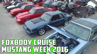 Mustang week 2016 ///foxbody cruise