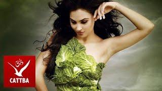 Вегетарианская диета - какая польза?