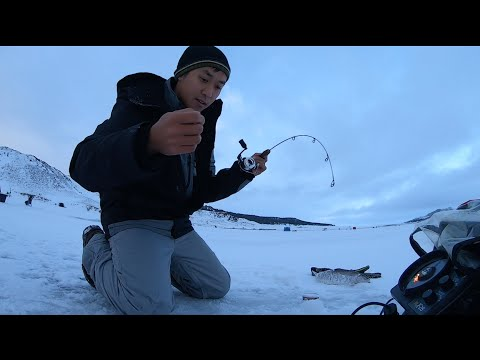 Eleven Mile Ice Fishing For Rainbows, Cutbows