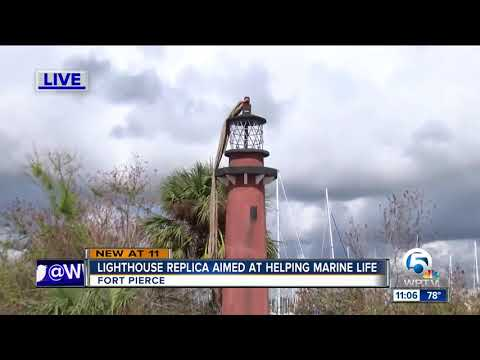 Lighthouse replica aimed at helping marine life