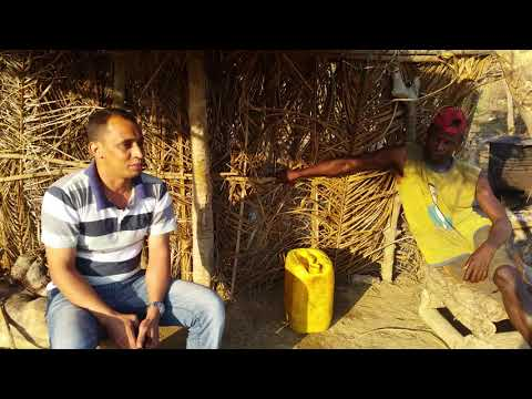 Rio keve : angola قصة التماسيح في نهر