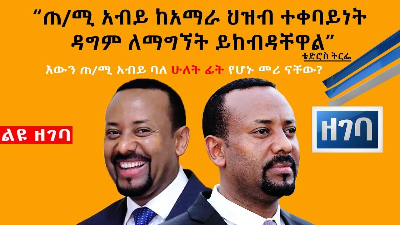 ጠ/ሚ አብይ ባለ ሁለት ፊት የሆኑ መሪ ናቸው | Abiy Ahmed | New Africa | Amhara Association of America |