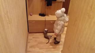 Cat and Mittens (Кот Гера и варежки)