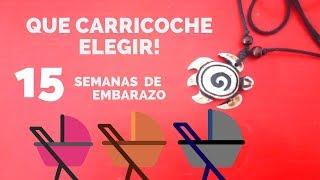 SEMANA 15 DE EMBARAZO /MIRAMOS CARRICOCHES
