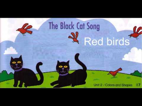 the black cat song- EYIC THIEN LY CENTER